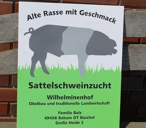 Erste Mitgliederversammlung des Sattelschwein-Vereins
